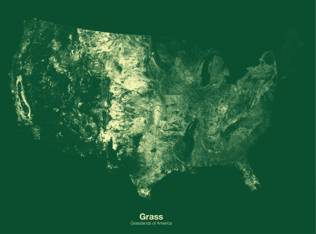 Grasslands of the US // Minimal Maps project by Michael Pecirno