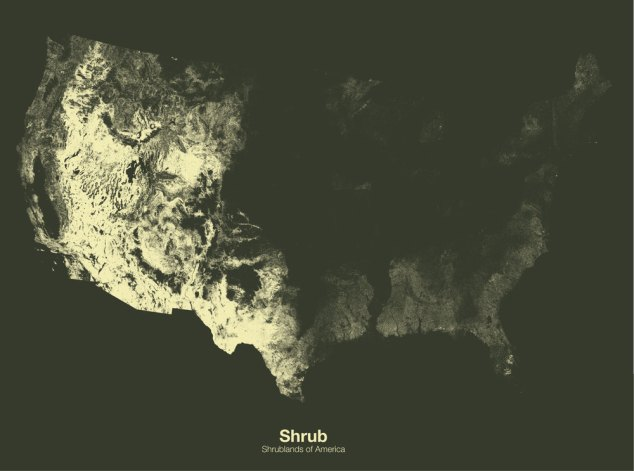 Shrublands of the US // Minimal Maps project by Michael Pecirno